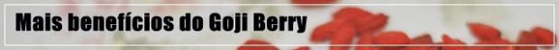 Goji Berry emagrece?