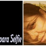 Dicas e sugestões para selfie