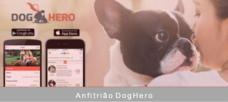 Ganhar dinheiro extra com DogHero