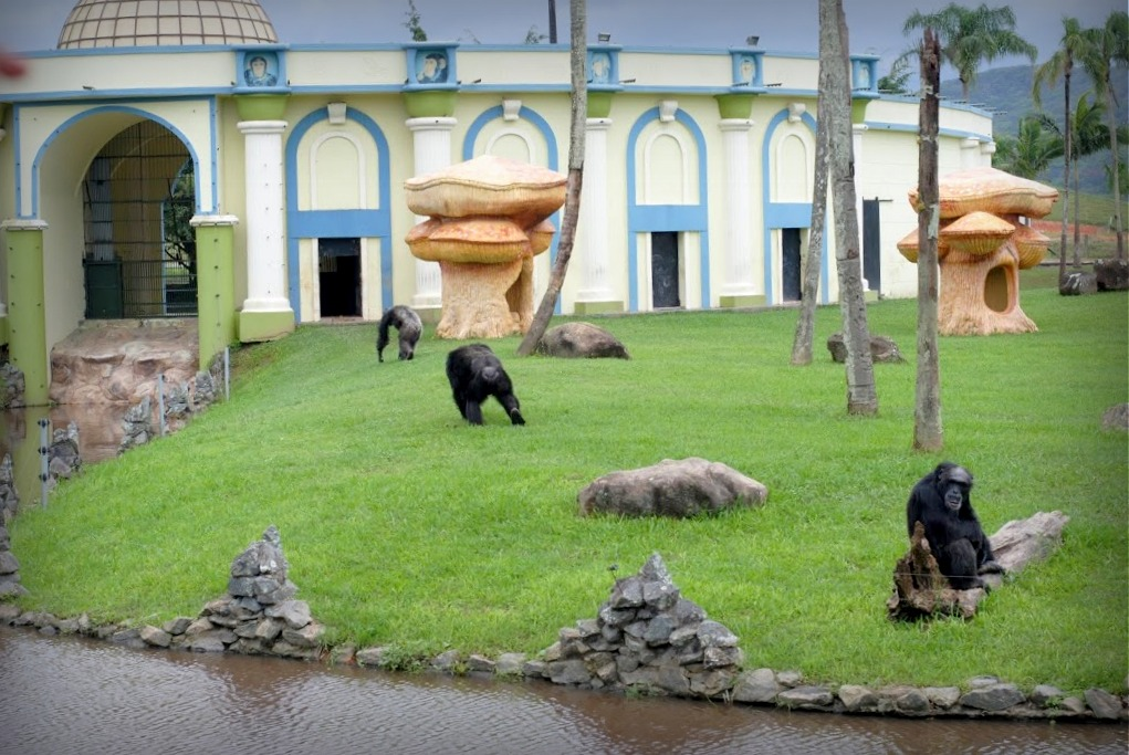 Zoológico Beto Carrero